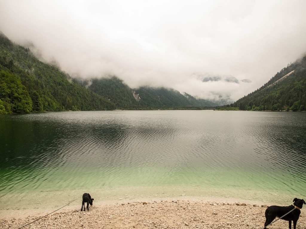 Am Ufer des Lago del Predil