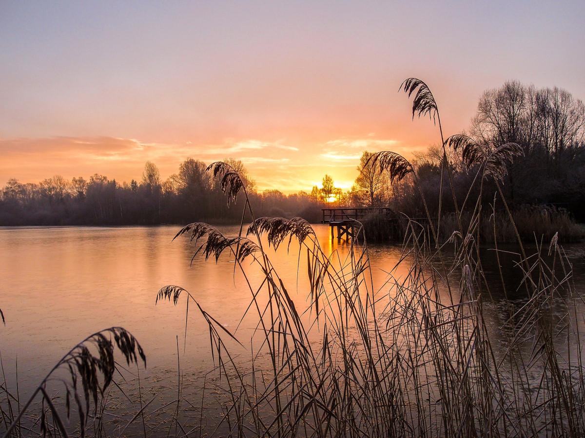 Sonnenaufgang am Böhringer See