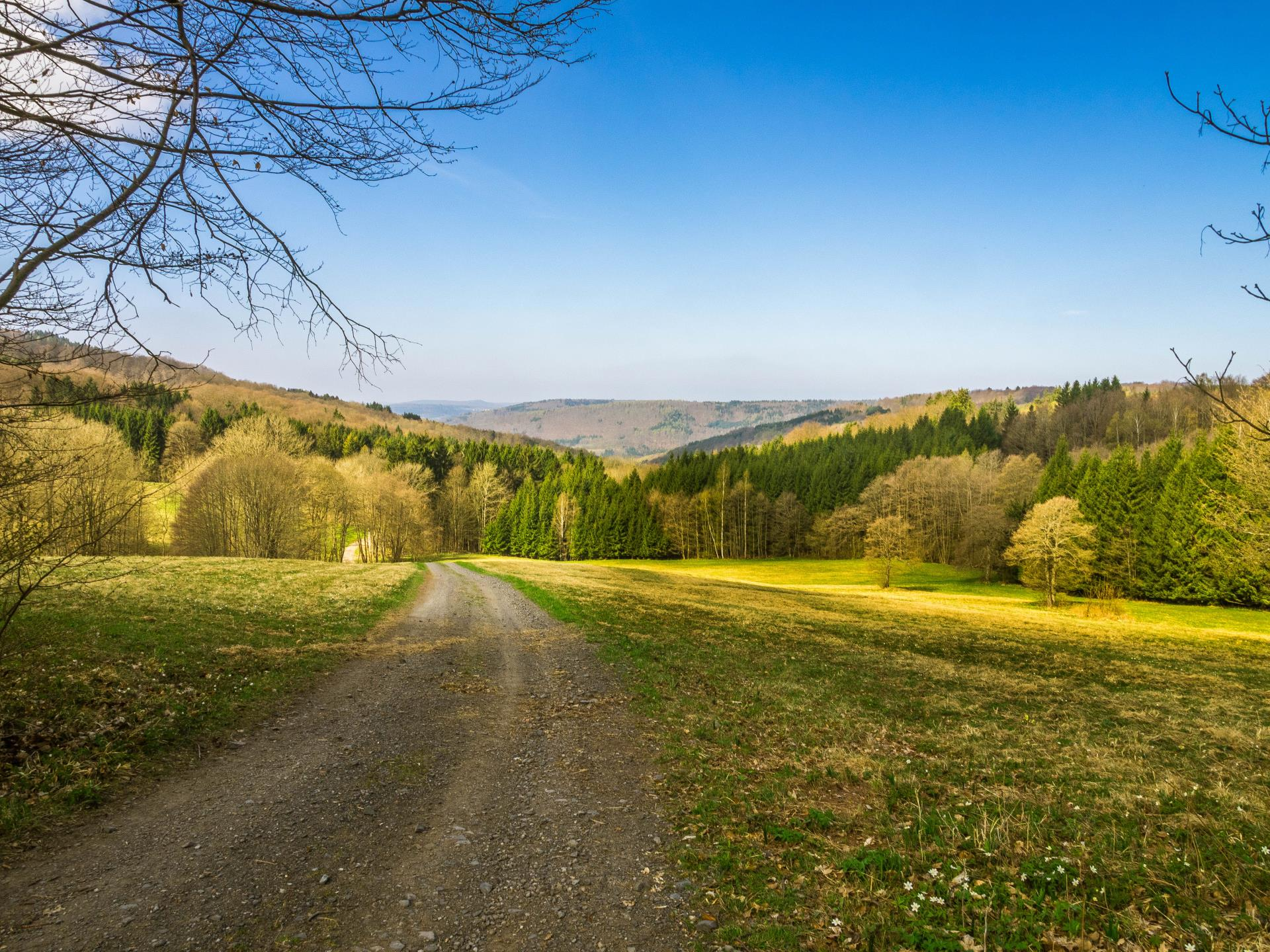 Fernsichten Rhön-Rundweg 6 Schwarze Berge
