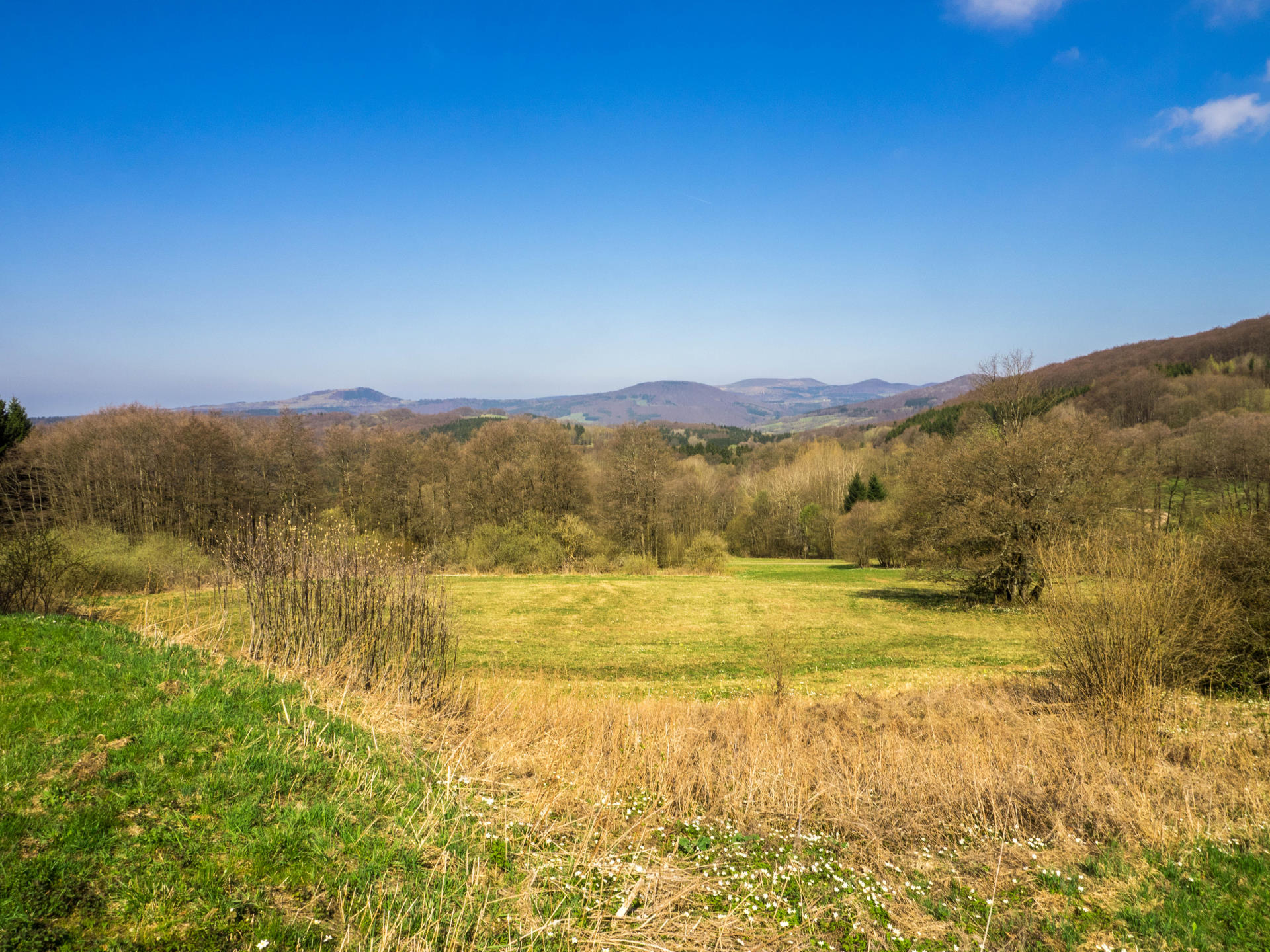 Blick in die Dammersfeld Rhön