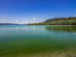 Am Nordufer des Lac-de-Sainte-Croix