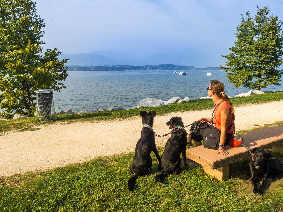 camping gardasee karte 9 Campingplätze am Gardasee mit Hundestrand | Hund im Wohnmobil