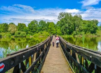 Brücke zum Arboretum am Deseda-See | Wohnmobil-Reise Ungarn