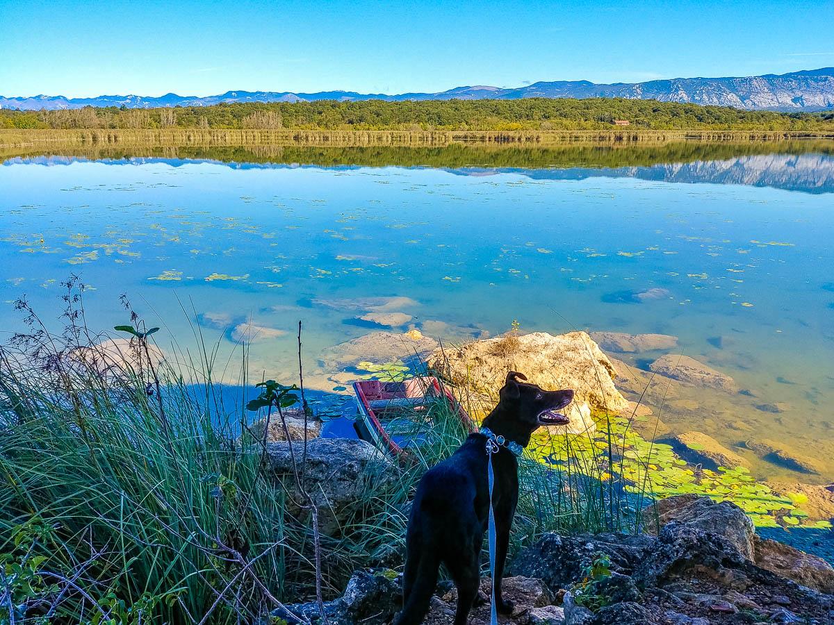 Am Jezero kraj Njivica
