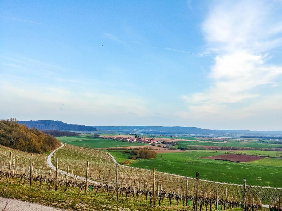 Blick über die Wiebelsberger Weinberge in den Steigerwald