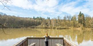 Plattform Großer Wolfsee auf der Traumrunde Dornheim