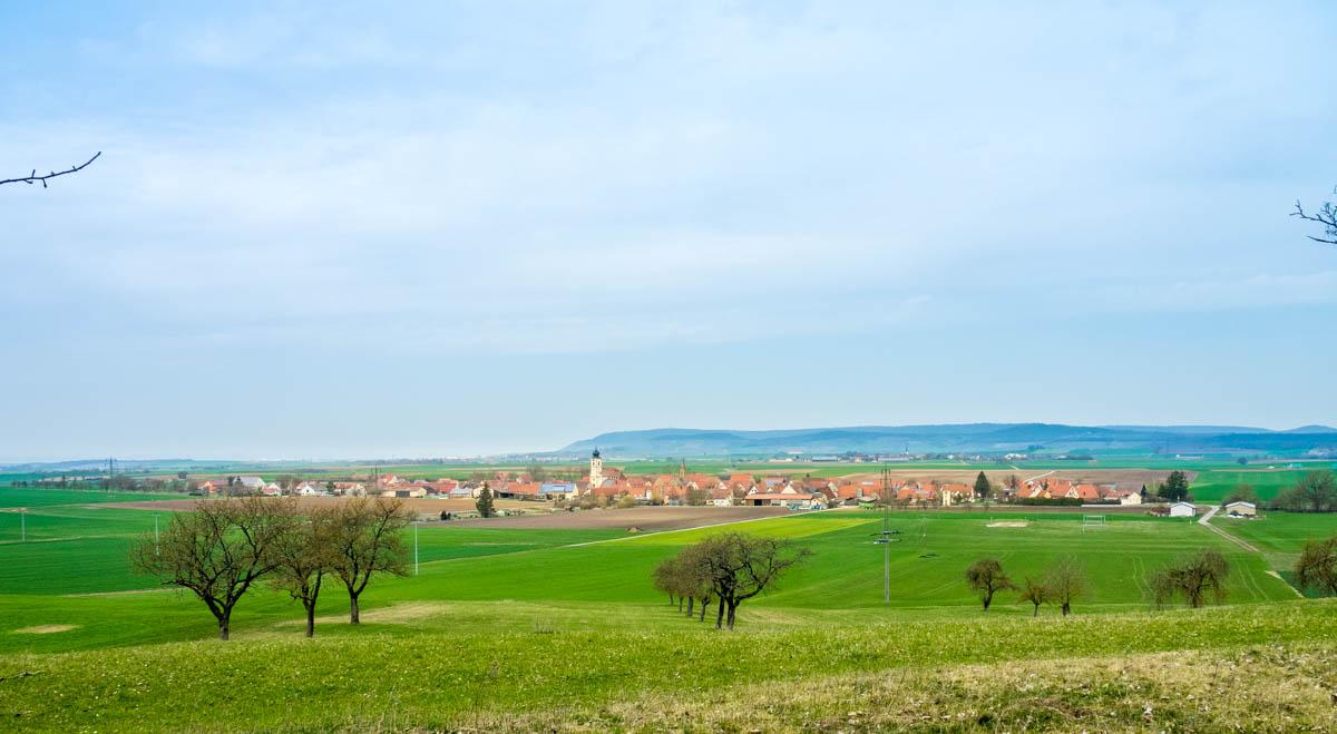Blick vom Waldrand auf Dornheim