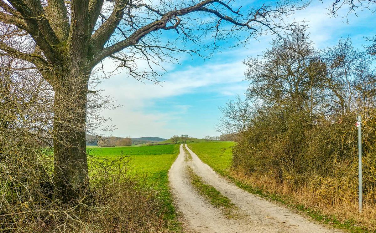 Wanderweg auf der Traumrunde Dornheim